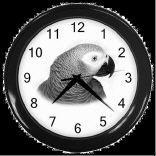 yaco reloj